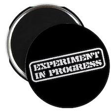 Experiment in Progress Magnet