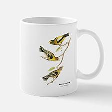 Audubon Evening Grosbeak Birds Mug