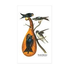 Audubon Purple Martins Bird Rectangle Sticker 10
