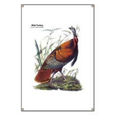 Audubon Wild Turkey Bird Banner