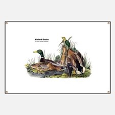 Audubon Mallard Ducks Banner
