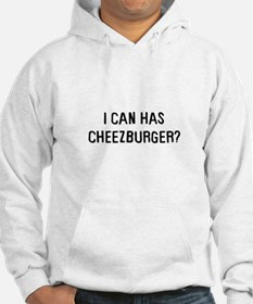 I can has cheezburger? Hoodie