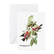 Audubon White Winged Crossbill Greeting Card