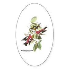 Audubon White Winged Crossbill Oval Decal