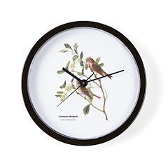Audubon Common Redpoll Birds Wall Clock
