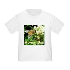 Honey Bee T