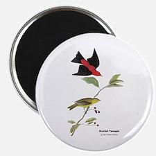 Audubon Scarlet Tanager Birds Magnet