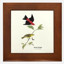 Audubon Scarlet Tanager Birds Framed Tile