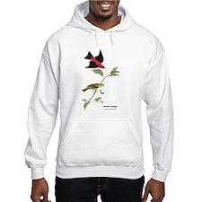 Audubon Scarlet Tanager Birds (Front) Hoodie