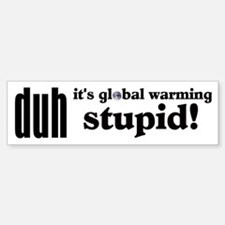 Duh, IT'S GLOBAL WARMING STUPID! Bumper Bumper Bumper Sticker