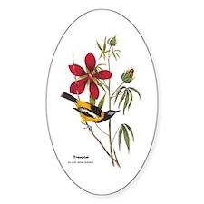 Audubon Troupial Birds Oval Decal