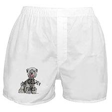Cesky rules Boxer Shorts