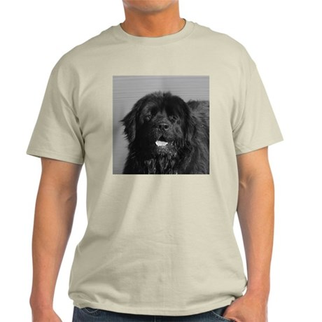 Dog Art Shop for dog lovers Ash Grey T-Shirt