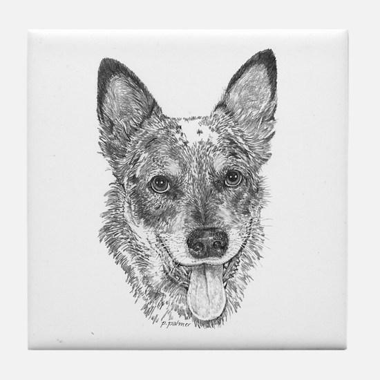 Albee - Australian Cattle Dog Tile Coaster