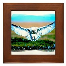 Cute Talon Framed Tile