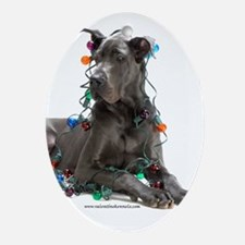 Cute Dane Oval Ornament
