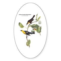 Audubon Yellow-Headed Blackbird Oval Decal
