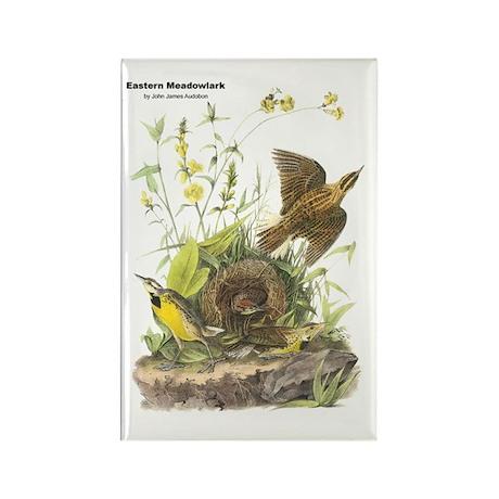 Audubon Eastern Meadowlark Birds Rectangle Magnet