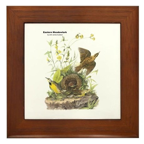 Audubon Eastern Meadowlark Birds Framed Tile