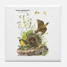 Audubon Eastern Meadowlark Birds Tile Coaster