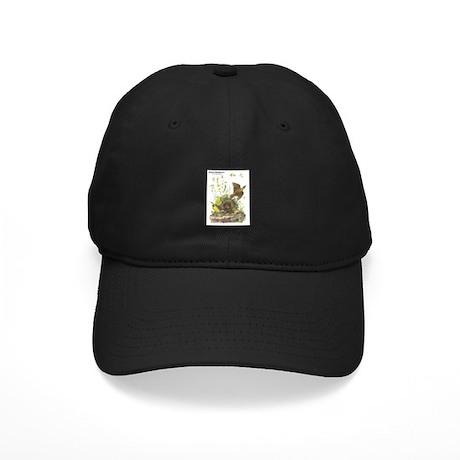 Audubon Eastern Meadowlark Birds Black Cap