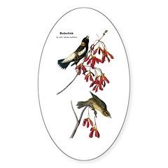 Audubon Bobolink Birds Oval Decal