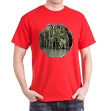 Cypress Reflections T-Shirt