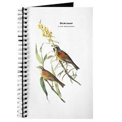 Audubon Dickcissle Birds Journal