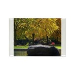 Reflecting pool Rectangle Magnet (100 pack)