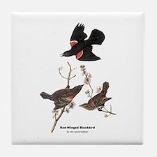 Audubon Red-Winged Blackbird Tile Coaster