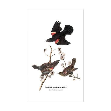 Audubon Red-Winged Blackbird Rectangle Sticker