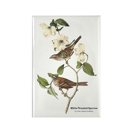 Audubon White-Throated Sparrow Rectangle Magnet (1