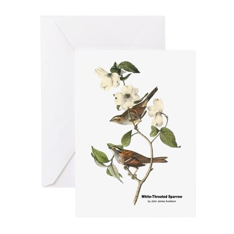 Audubon White-Throated Sparrow Greeting Cards (Pk