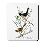 Audubon Towhee Bird Mousepad