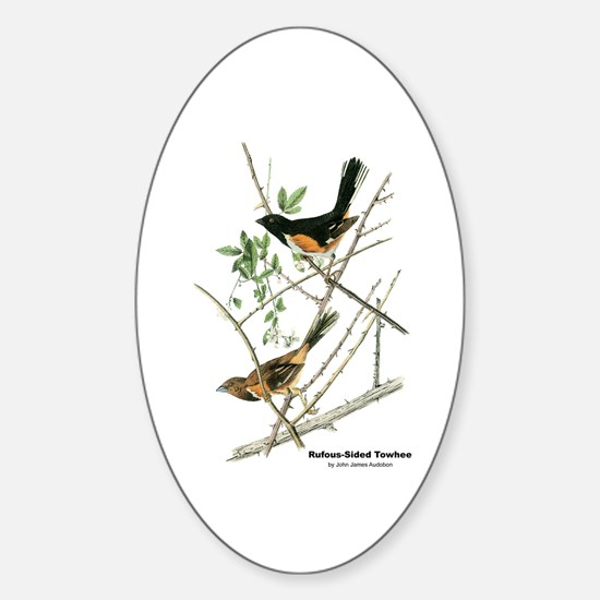Audubon Towhee Bird Oval Decal