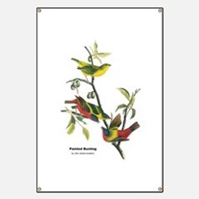 Audubon Painted Bunting Bird Banner