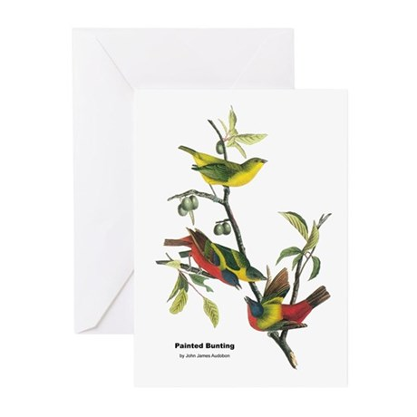 Audubon Painted Bunting Bird Greeting Cards (Pk of