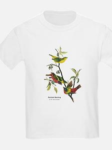 Audubon Painted Bunting Bird (Front) T-Shirt