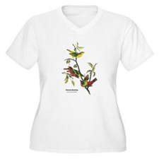 Audubon Painted Bunting Bird T-Shirt