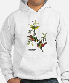 Audubon Painted Bunting Bird (Front) Hoodie
