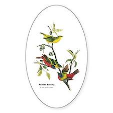Audubon Painted Bunting Bird Oval Decal