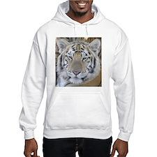 Tiger Portait Hoodie