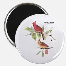 Audubon Northern Cardinal Bird Magnet