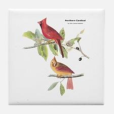 Audubon Northern Cardinal Bird Tile Coaster