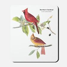 Audubon Northern Cardinal Bird Mousepad