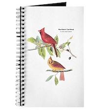 Audubon Northern Cardinal Bird Journal