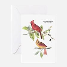 Audubon Northern Cardinal Bird Greeting Card