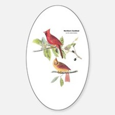 Audubon Northern Cardinal Bird Oval Decal