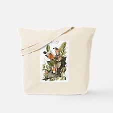 Audubon American Robin Birds Tote Bag