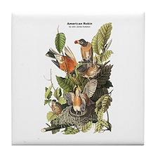 Audubon American Robin Birds Tile Coaster